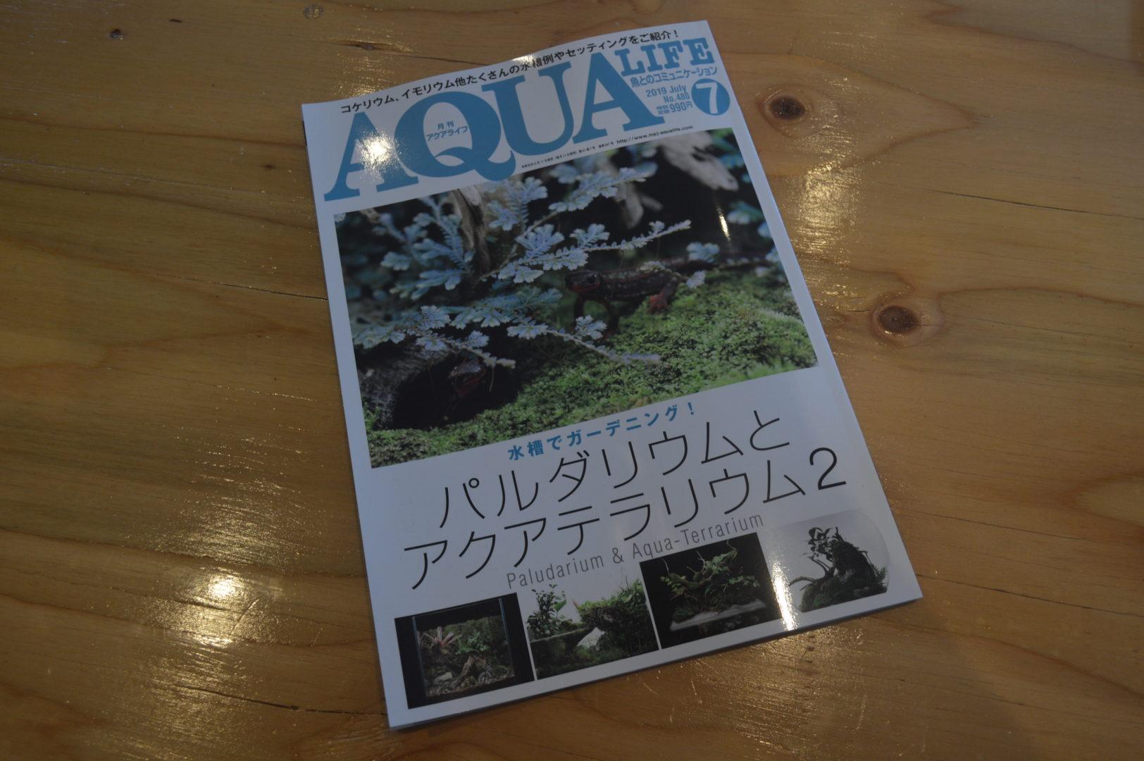 月刊アクアライフ 掲載してもらいました!