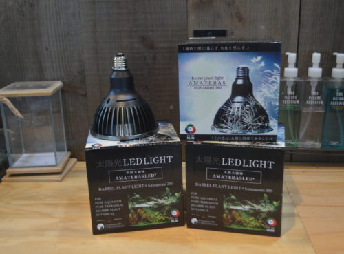 植物LED 新時代!