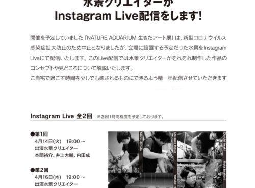 4/14・4/16 19:00からADA水景クリエイターが Instagram Live配信をします!